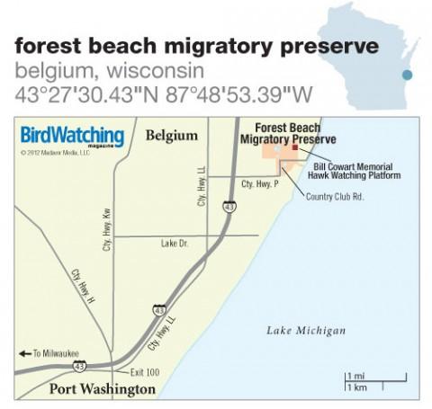 156. Forest Beach Migratory Preserve, Belgium, Wisconsin