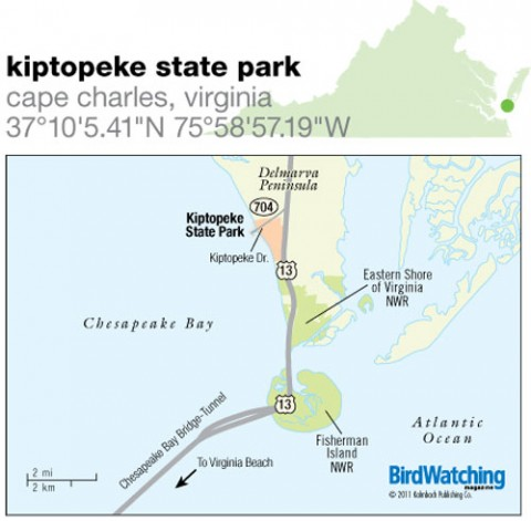 122. Kiptopeke State Park, Cape Charles, Virginia