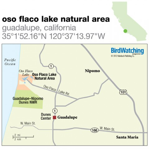 138. Oso Flaco Lake Natural Area, Guadalupe, California