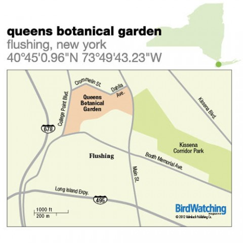130. Queens Botanical Garden, Flushing, New York