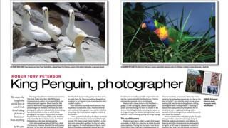 rtp-photographer-500