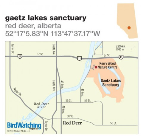 165. Gaetz Lakes Sanctuary, Red Deer, Alberta