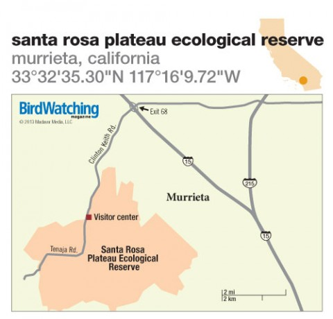 175. Santa Rosa Plateau Ecological Reserve, Murrieta, California