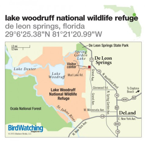 174. Lake Woodruff National Wildlife Refuge, De Leon Springs, Florida