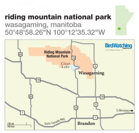 190. Riding Mountain National Park, Wasagaming, Manitoba