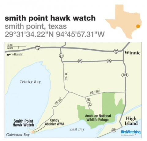 195. Smith Point Hawk Watch, Smith Point, Texas