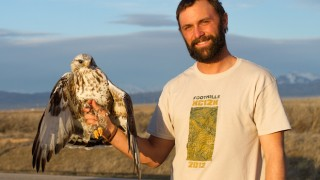 Conservation biologist Neil Paprocki with Rough-legged Hawk. Photo by Bryce Robinson.