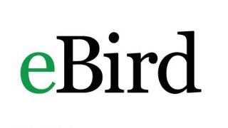 ebird_logo-320x180