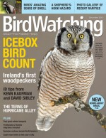 Current Issue