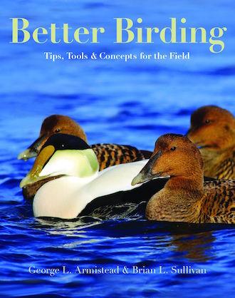 Better Birding_330x418