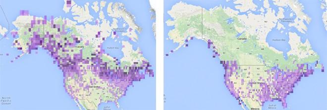 Common-Loon-maps-12-15