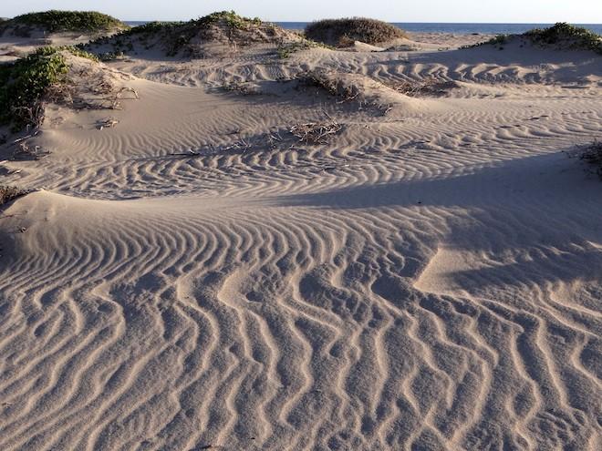 Ormond Beach, California. Photo by Marvin Sperlin