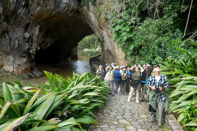 Birders at La Güira National Park, Pinar del Río Province, Cuba, February 2016, by Bruce Schwartz.