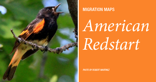 Redstart-maps-rotator