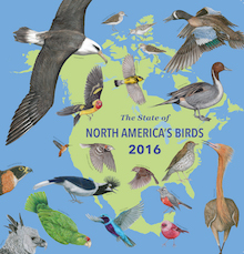 The State of North America's Birds 2016, a report on the conservation status of North America's birds.
