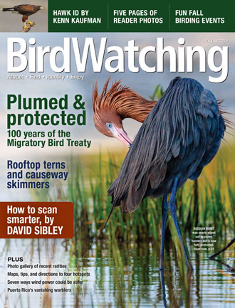 The cover of the August 2016 of BirdWatching Magazine.