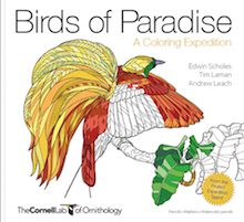 One of the best coloring books: Birds of Paradise: A Coloring Expedition, by Edwin Scholes, Tim Laman, and Andrew Leach.