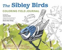 One of the best coloring books: The Sibley Birds Coloring Field Journal, by Cecilia Lehar.