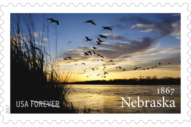Photo of Sandhill Cranes in flight by Michael Forsberg on new postage stamp