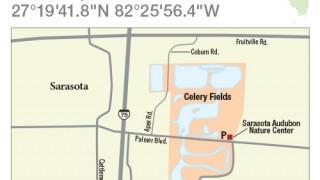Celery Fields map