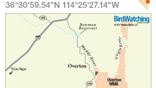 Overton WMA map