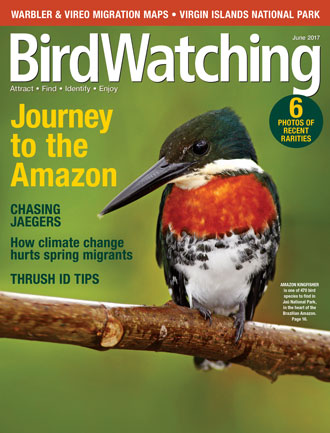 BirdWatching Magazine, June 2017.