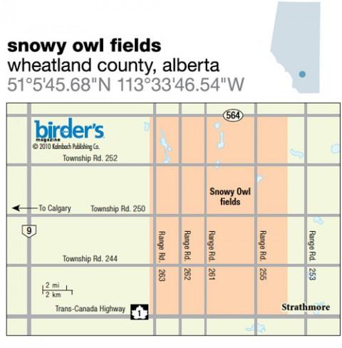 104. Snowy Owl Fields, Wheatland County, Alberta