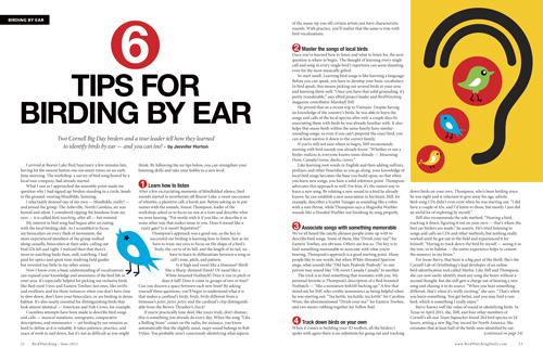 Six tips for birding by ear