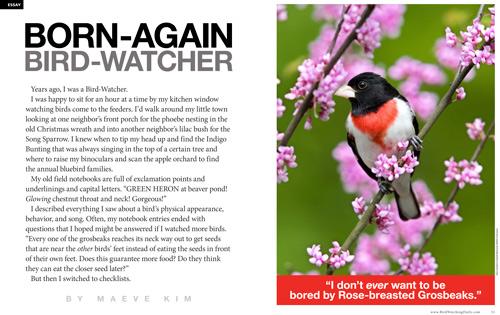 Born-again bird-watcher