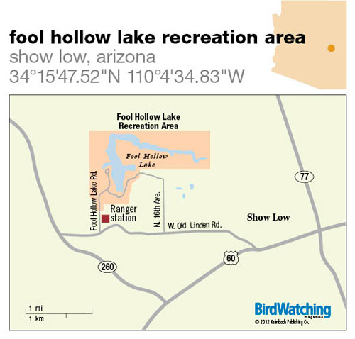 143 Fool Hollow Lake Recreation Area Show Low Arizona