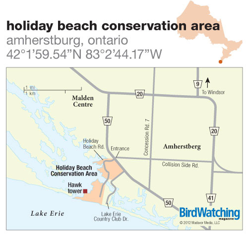 145. Holiday Beach Conservation Area, Amherstburg, Ontario