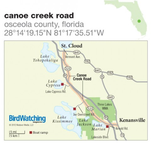 150. Canoe Creek Road, Osceola County, Florida - BirdWatching on gulf county road map, new smyrna beach road map, highlands county road map, saint lucie county road map, haines city road map, lehigh acres road map, palm bay road map, orlando road map, cape coral road map, eatonville road map, ft. meade road map, escambia county road map, christmas road map, florida road map, aspen road map, sumter county road map, santa rosa county road map, cruz bay road map, east palatka road map, grapevine road map,