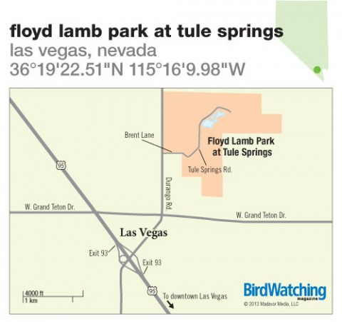 162. Floyd Lamb Park at Tule Springs, Las Vegas, Nevada