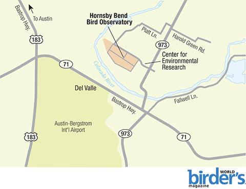 10. Hornsby Bend Bird Observatory, Austin, Texas