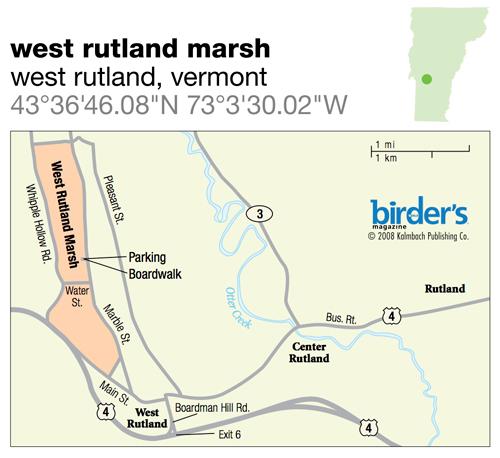 50. West Rutland Marsh, West Rutland, Vermont