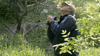 Editor Chuck Hagner looks for birds at Estabrook Park in Milwaukee. Photo by Jessica Eskelsen