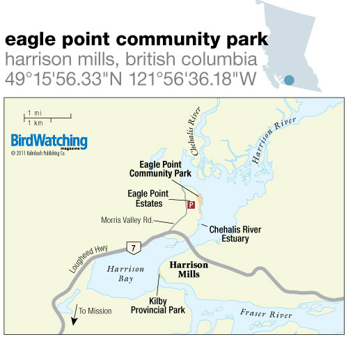 124. Eagle Point Community Park, Harrison Mills, British Columbia