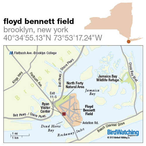 141. Floyd Bennett Field, Brooklyn, New York