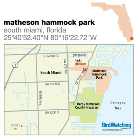 133. Matheson Hammock Park, South Miami, Florida