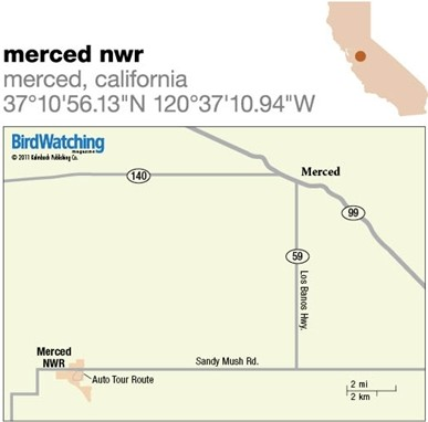 125. Merced NWR, Merced, California