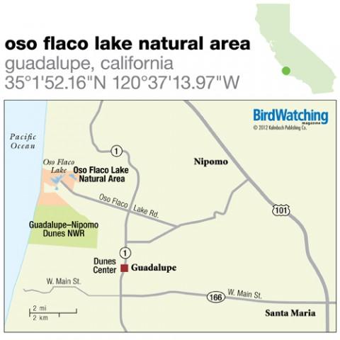 138. Oso Flaco Lake Natural Area, Guadalupe, California