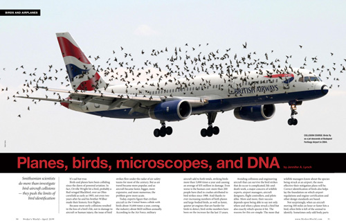 Planes, birds, microscopes, and DNA