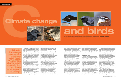 Climate change and Carolina Wrens, Gray Jays, Adelie Penguins, and other birds