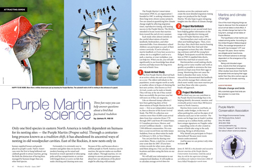Species profile: How to add to knowledge about Purple Martins: the Scout-Arrival Study, Purple MartinWatch, and Project MartinRoost