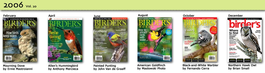 20 years of Birder's World magazine covers