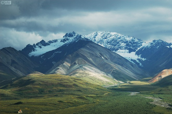 denali-national-park-polychrome-pass-mia-mcpherson-0114