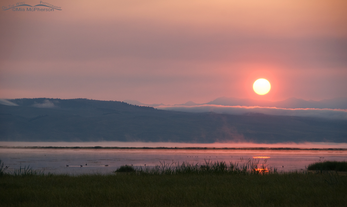 Red Rock Lakes National Wildlife Refuge, Montana