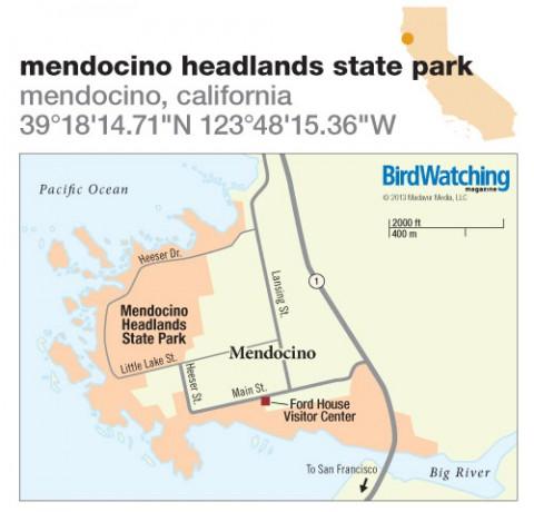 167. Mendocino Headlands State Park, Mendocino, California