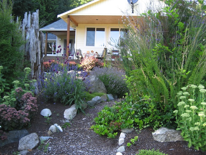 Five simple ways to grow your yard list