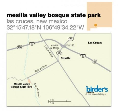 103. Mesilla Valley Bosque State Park, Las Cruces, New Mexico